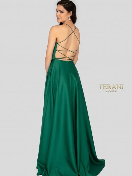 terani1911p8178_back